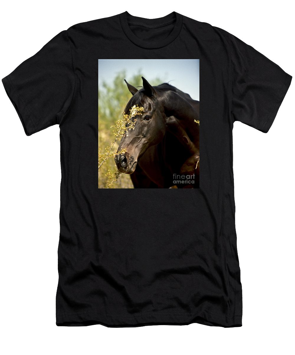 Horse Men's T-Shirt (Athletic Fit) featuring the photograph Portrait Of A Thoroughbred by Kathy McClure