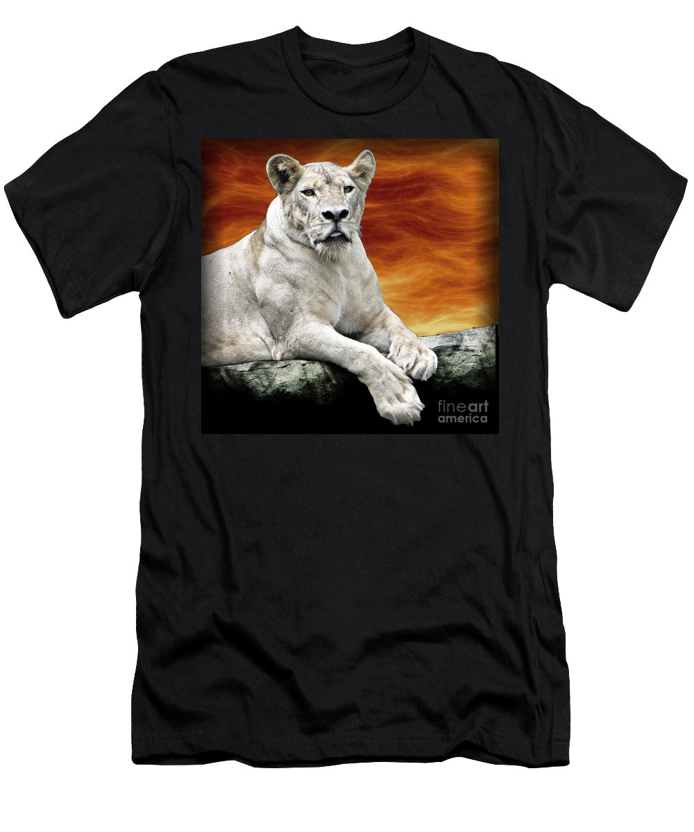 Lioness Men's T-Shirt (Athletic Fit) featuring the photograph Posing Lioness by Ben Yassa