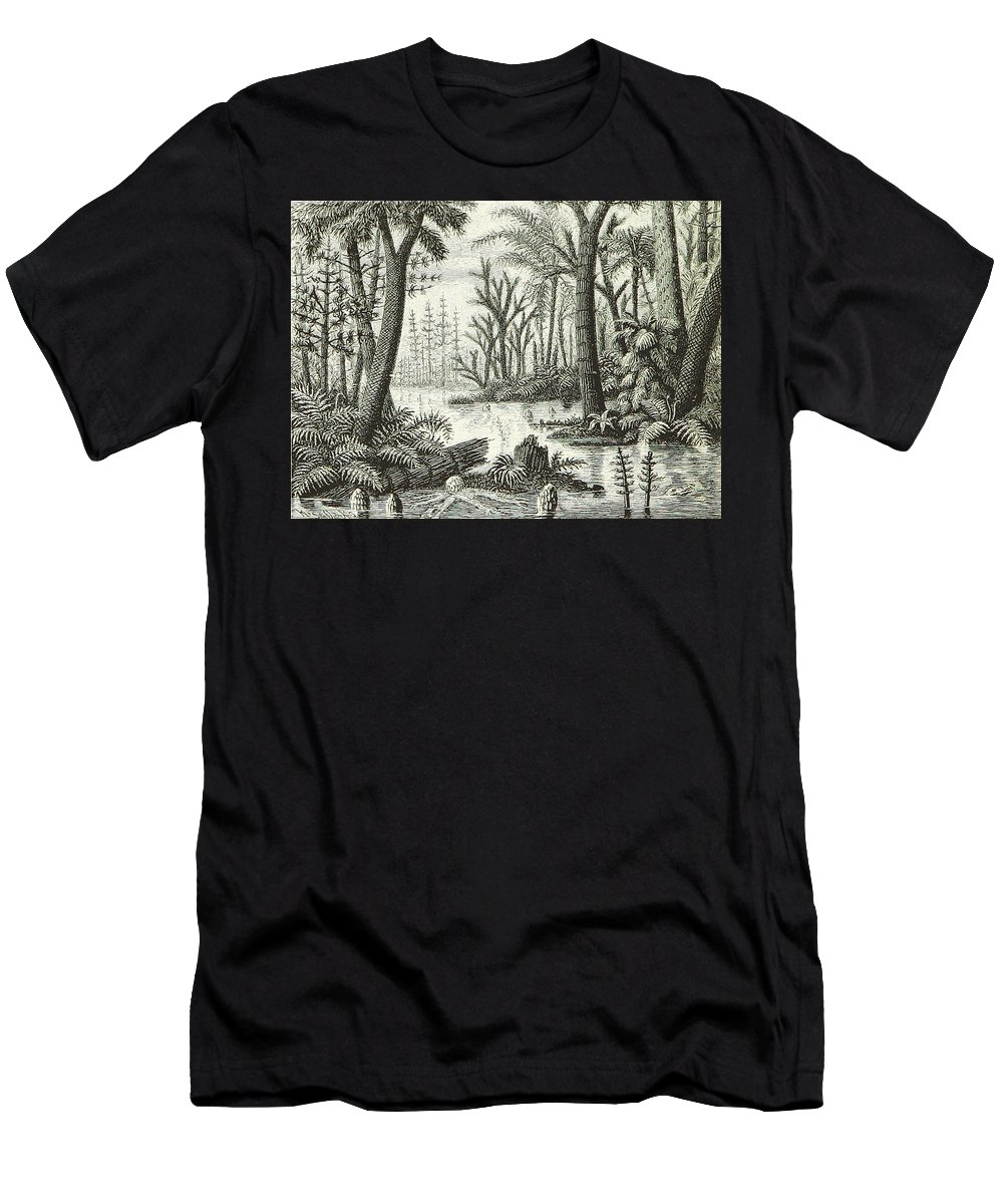 Historic Men's T-Shirt (Athletic Fit) featuring the photograph Prehistoric Flora, Carboniferous by British Library