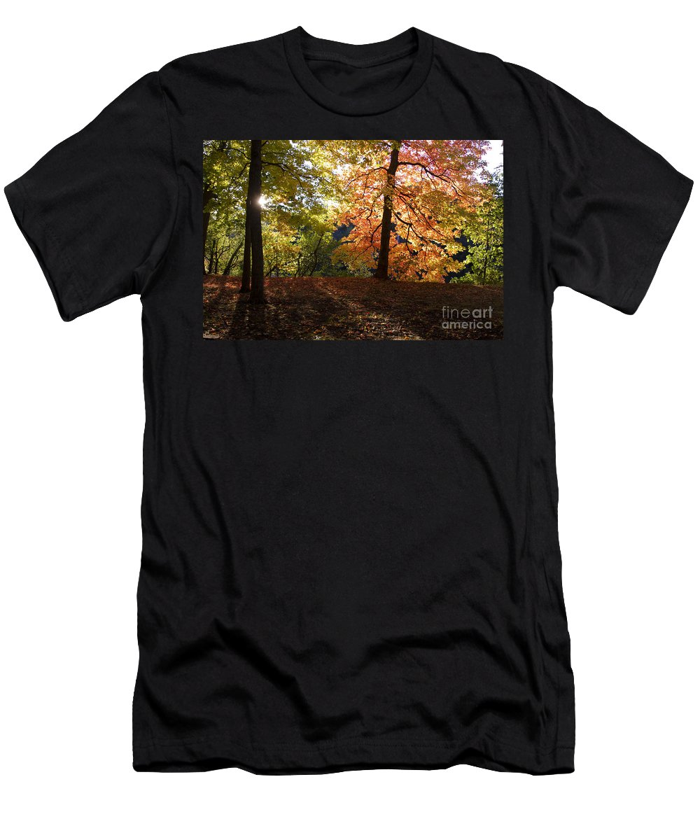 Fall Men's T-Shirt (Athletic Fit) featuring the photograph Preserve Trails In Fall Three by Sara Schroeder