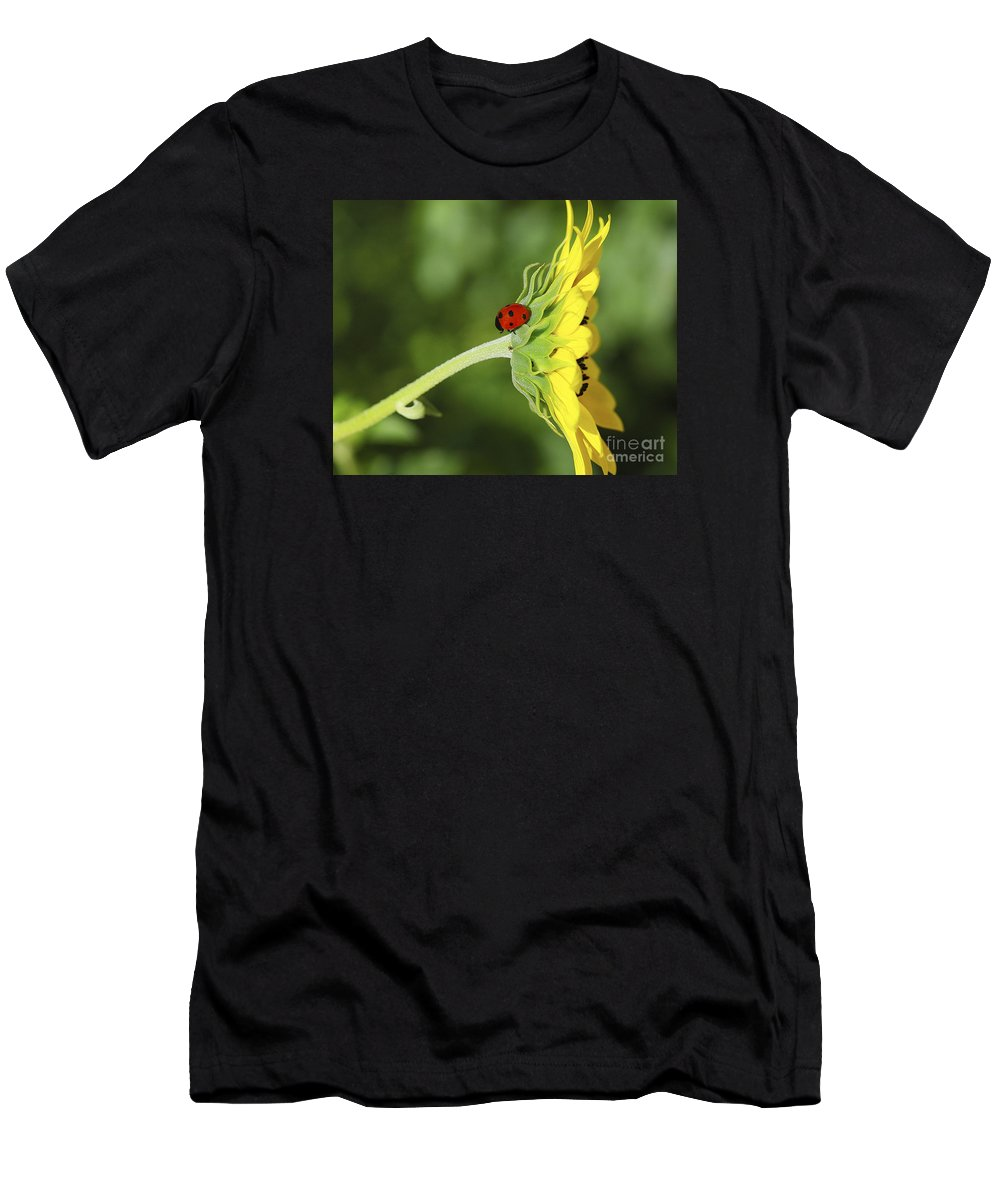 Lady Bug Men's T-Shirt (Athletic Fit) featuring the photograph Pretty Lady Bug by Timothy Flanigan and Debbie Flanigan Nature Exposure