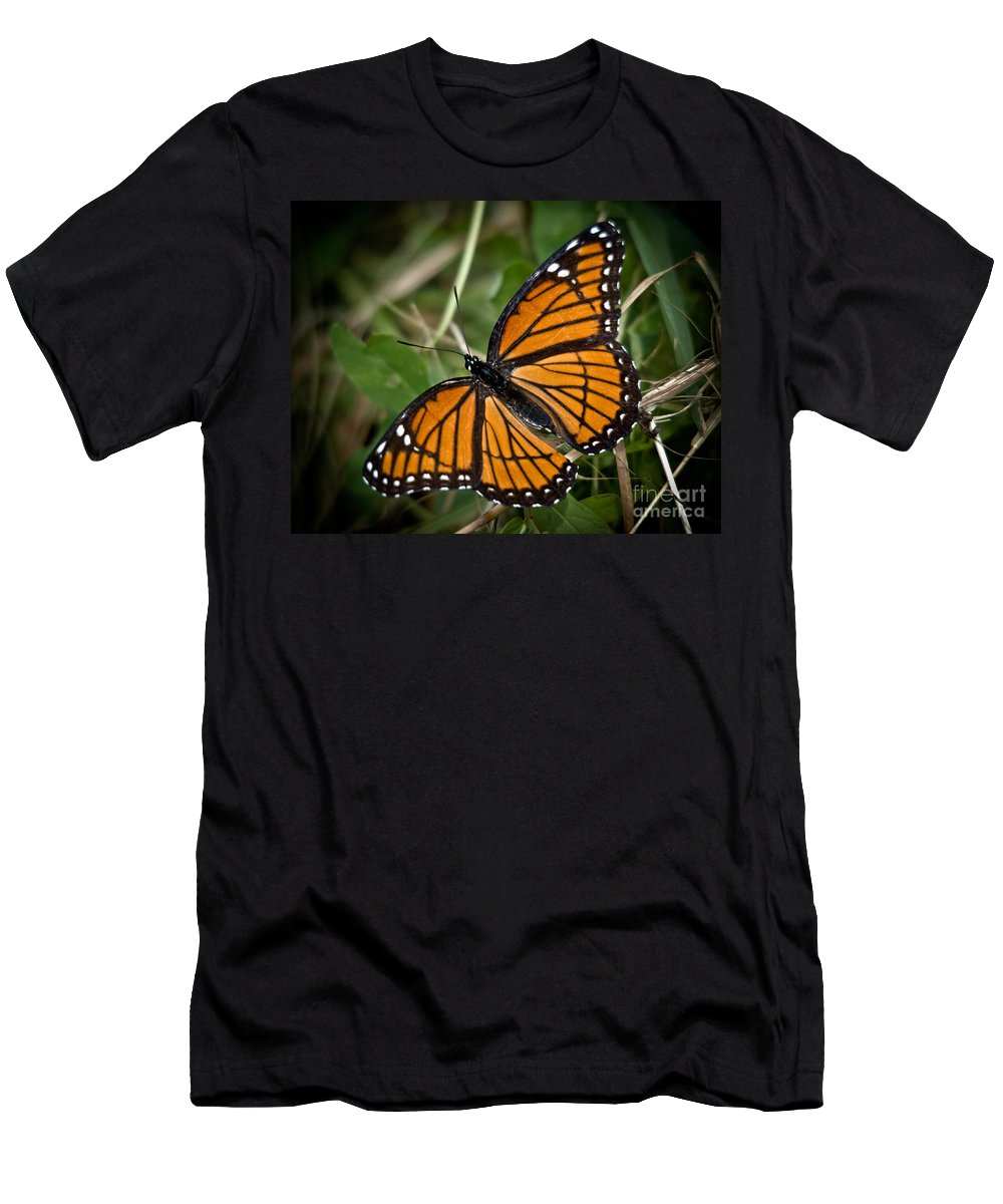 Monarch Men's T-Shirt (Athletic Fit) featuring the photograph Pretty Monarch by Cheryl Baxter