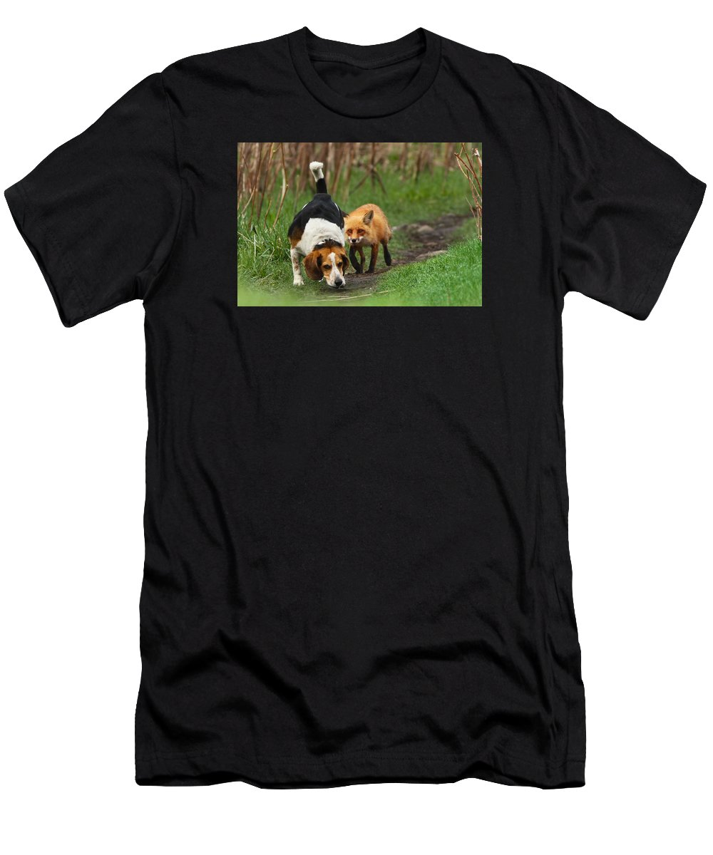 Animals Men's T-Shirt (Athletic Fit) featuring the photograph Probably The World's Worst Hunting Dog by Mircea Costina Photography