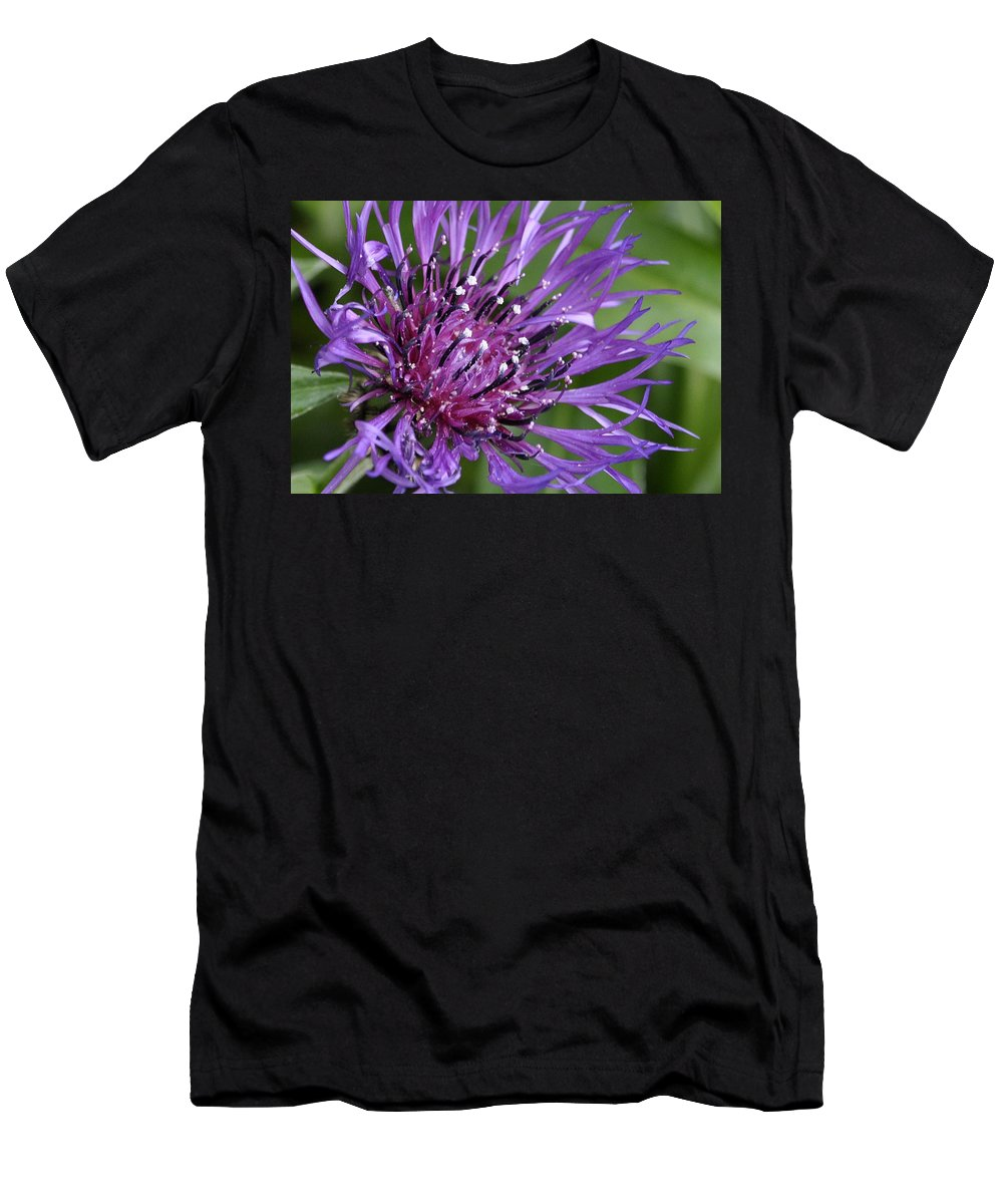 Flower Men's T-Shirt (Athletic Fit) featuring the digital art Purple Passion by Jim Brage