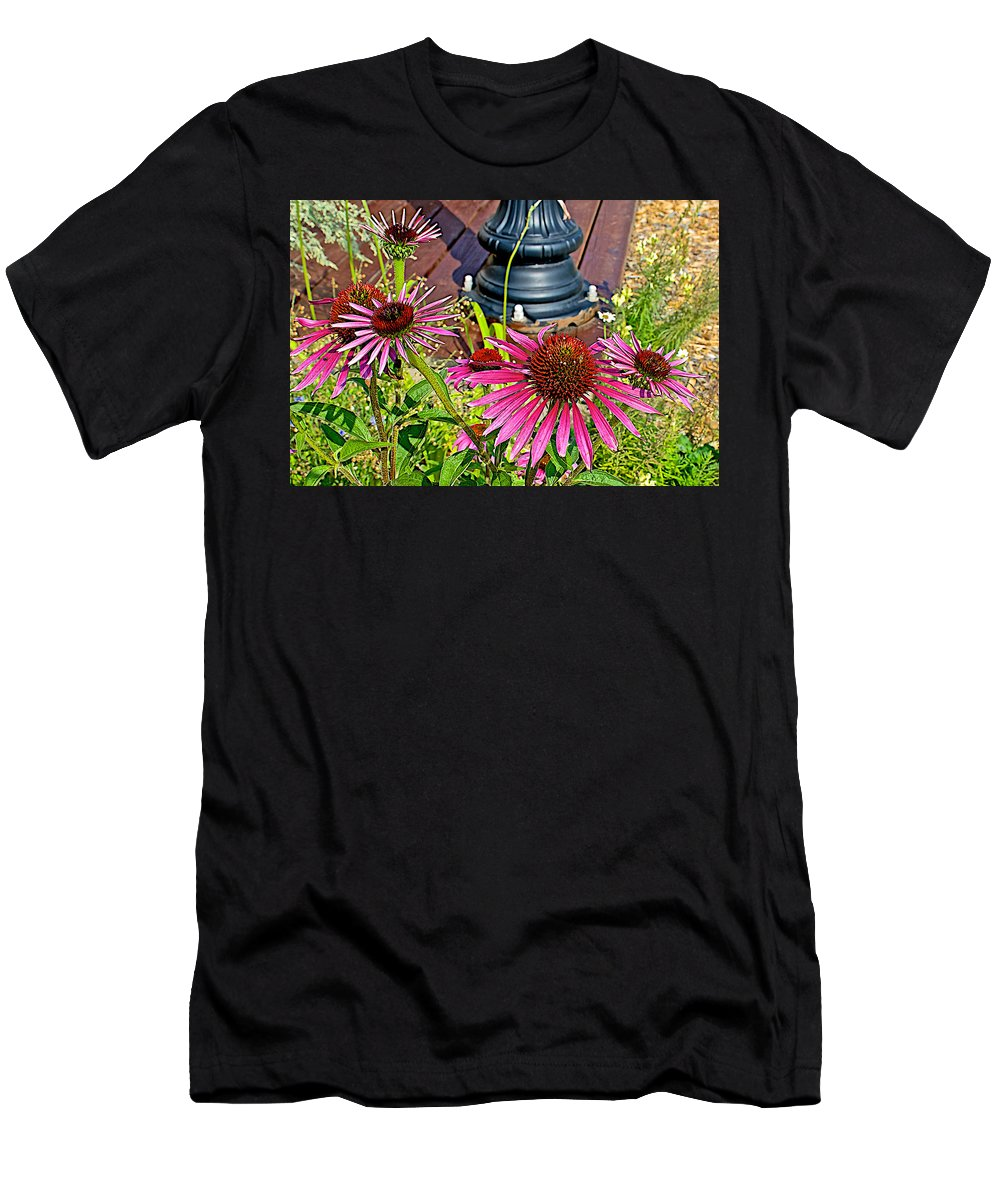 Purple Coneflowers By Former Rock Island Line Railroad Depot In Pipestone Men's T-Shirt (Athletic Fit) featuring the photograph Purple Coneflowers By Former Railroad Depot In Pipestone-minnesota by Ruth Hager