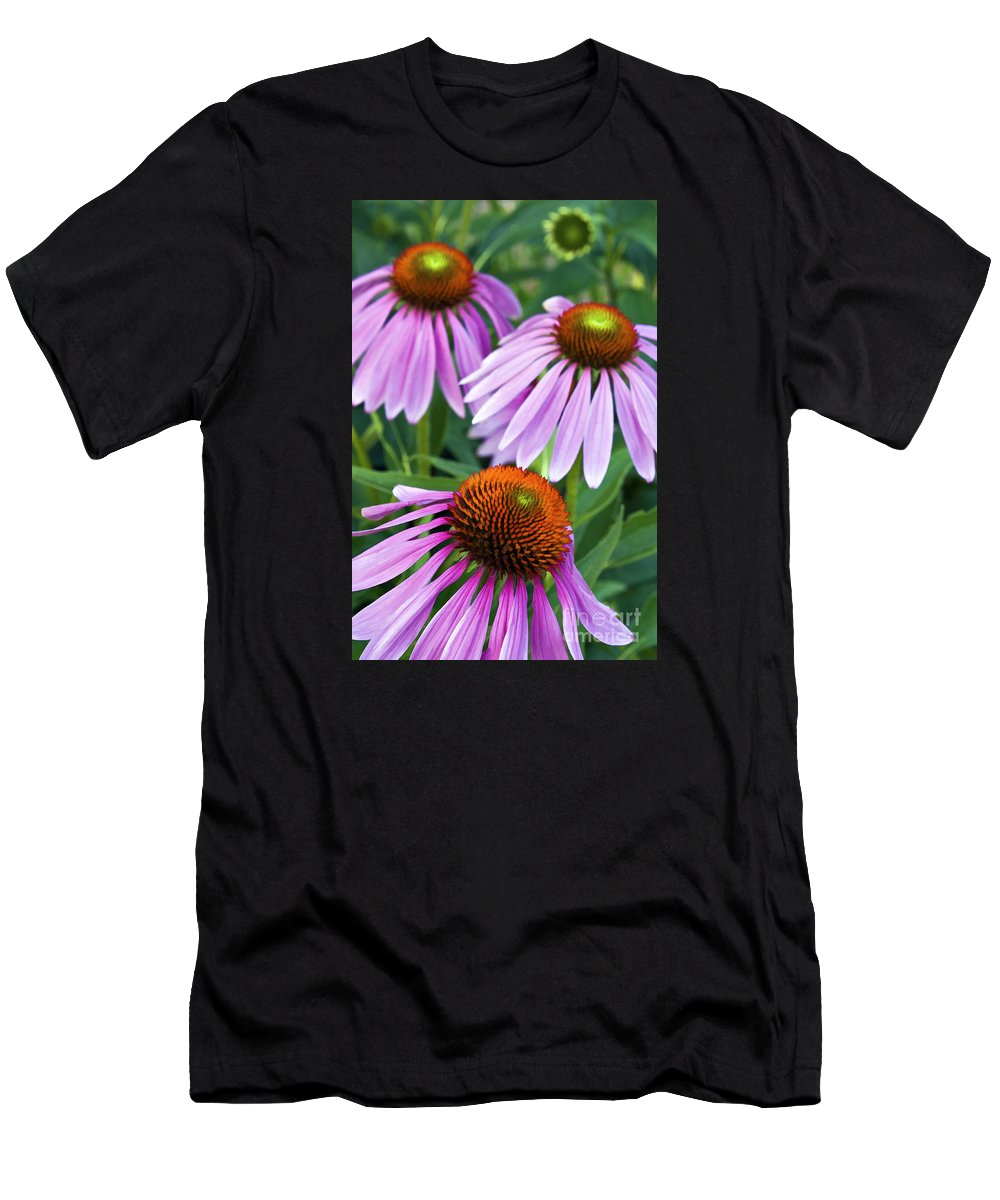 Painting Men's T-Shirt (Athletic Fit) featuring the photograph Purple Coneflowers - D007649a by Daniel Dempster