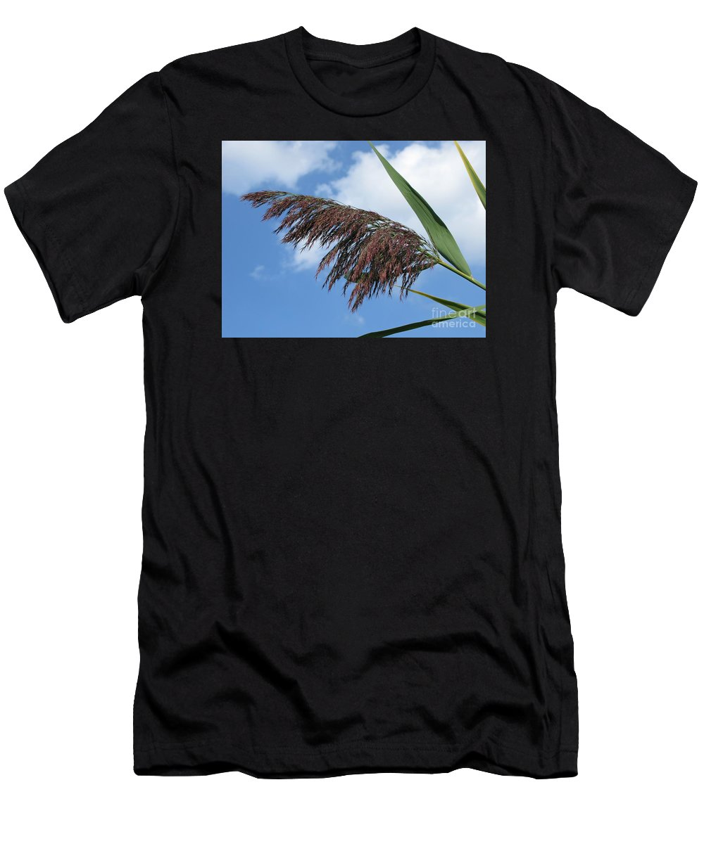 \reed Men's T-Shirt (Athletic Fit) featuring the photograph Purple Fringe by Ann Horn
