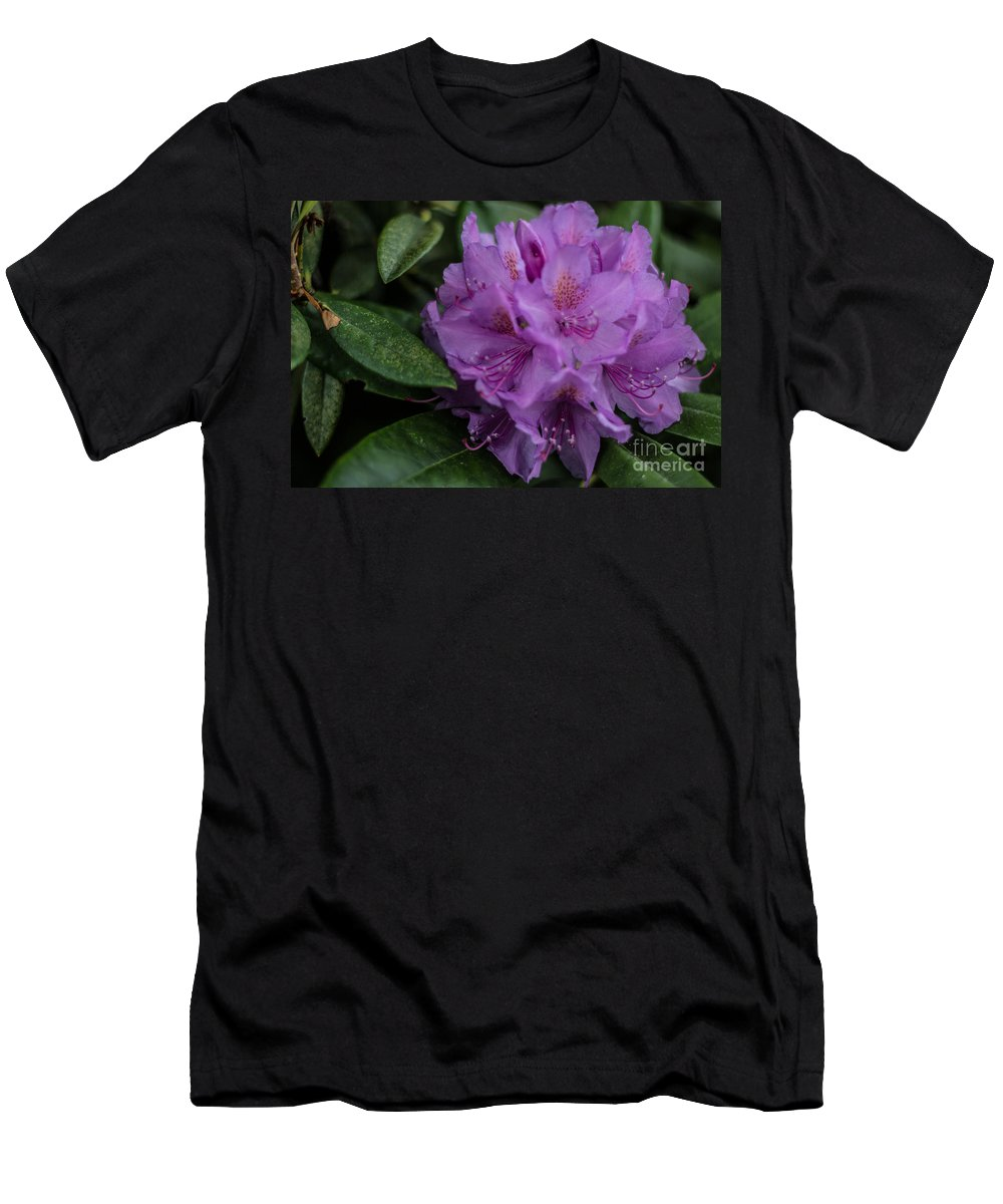 Flowers Men's T-Shirt (Athletic Fit) featuring the photograph Purple Glory by Suzanne Luft