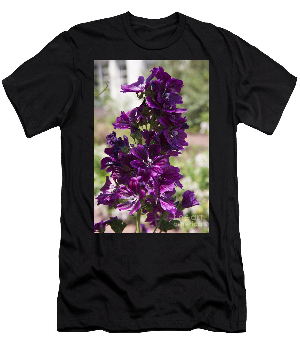 Hollyhock Men's T-Shirt (Athletic Fit) featuring the photograph Purple Hollyhock Flowers by Jason O Watson