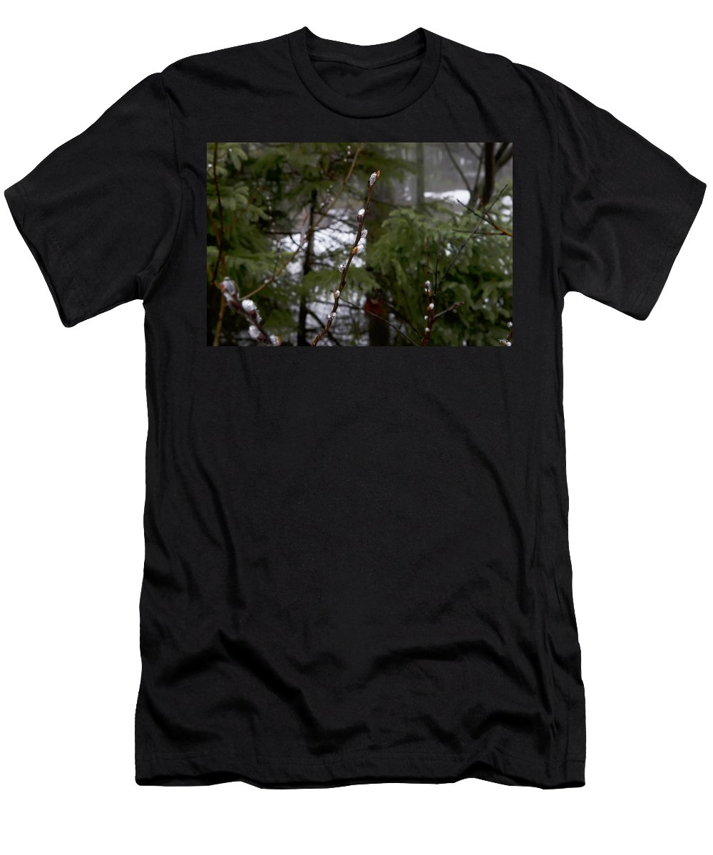 Lake Men's T-Shirt (Athletic Fit) featuring the photograph Pussy Willow In The Pines by Evie Carrier