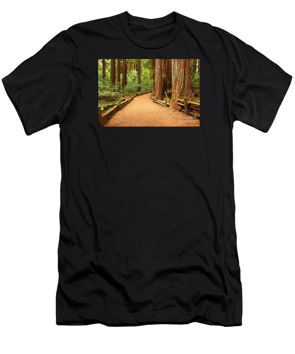 Forest Men's T-Shirt (Athletic Fit) featuring the photograph Quiet Forest by Gang Liu