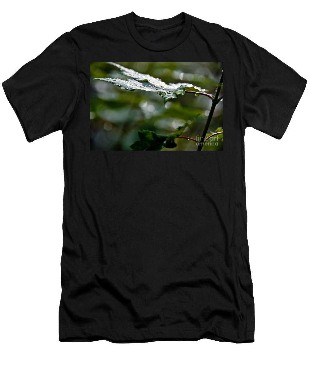 Leaves Men's T-Shirt (Athletic Fit) featuring the photograph Rain Sparkles by Cheryl Baxter