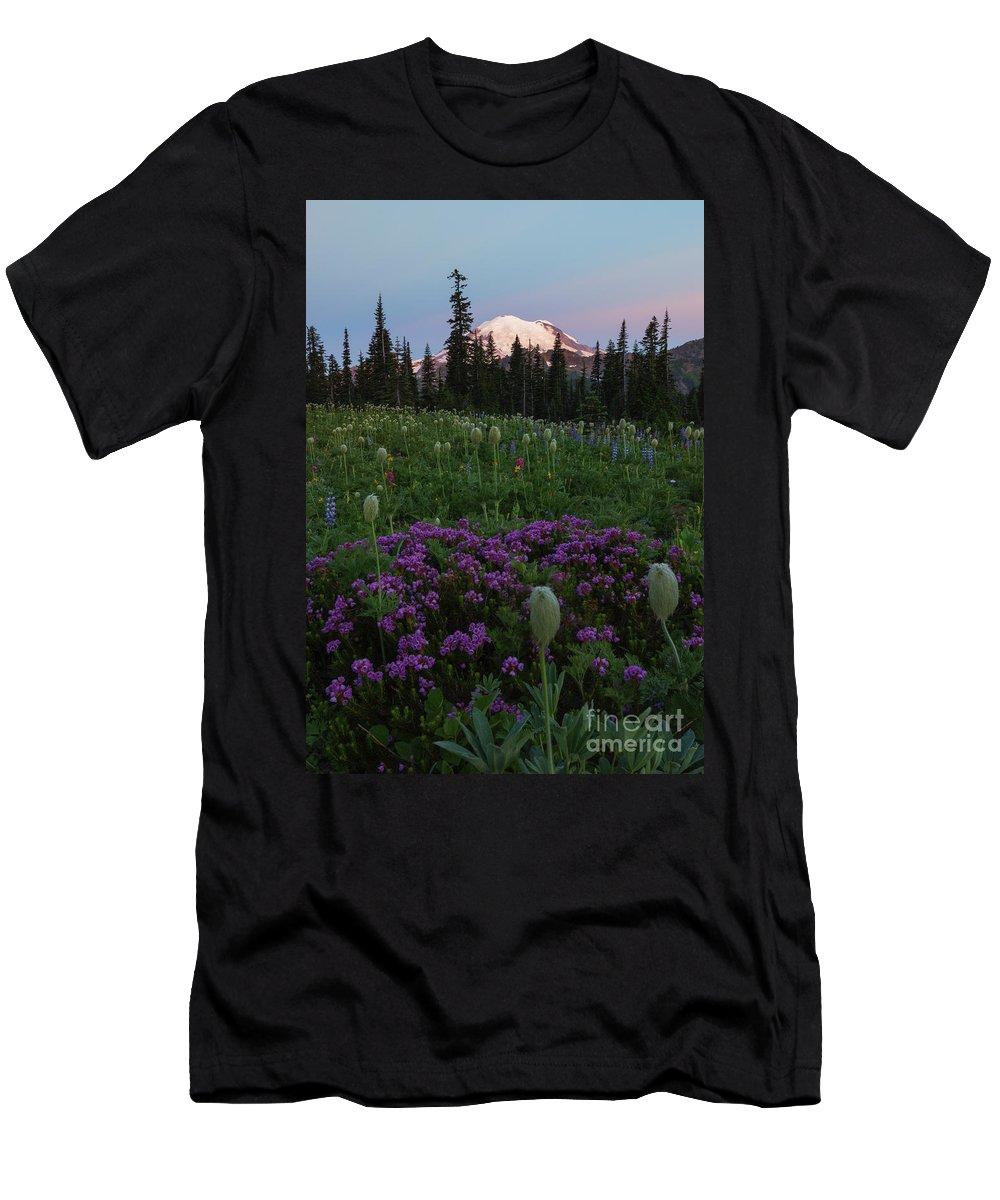 Rainier T-Shirt featuring the photograph Rainier Pastel Dawn by Mike Dawson