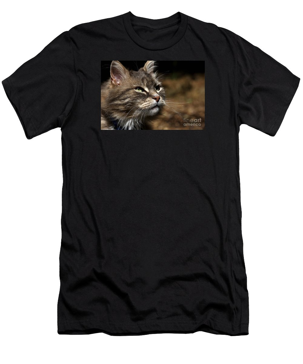 Cat Men's T-Shirt (Athletic Fit) featuring the photograph Ralph by Joy Watson