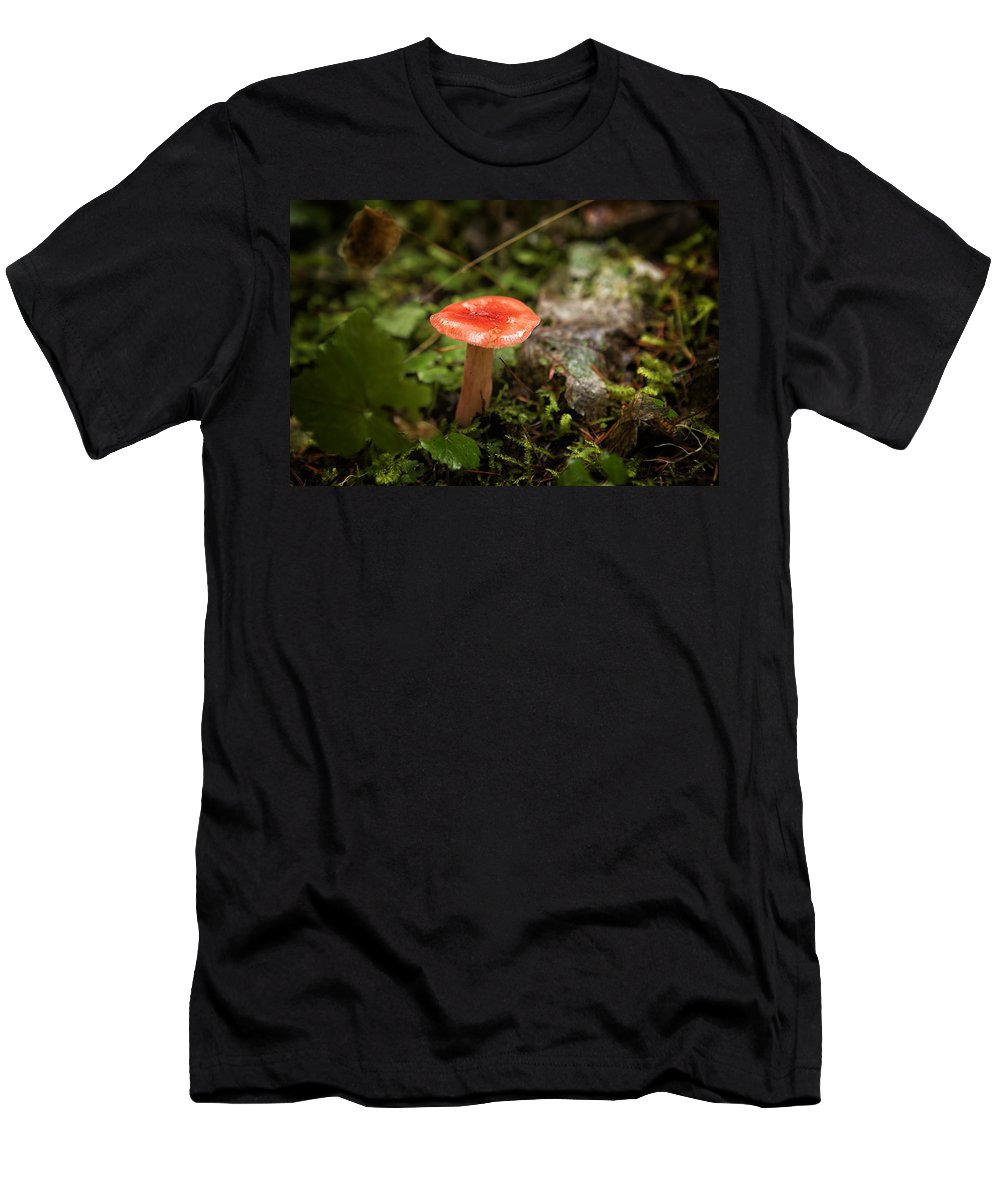 Russula Emetica Men's T-Shirt (Athletic Fit) featuring the photograph Red Coral Mushroom by Belinda Greb