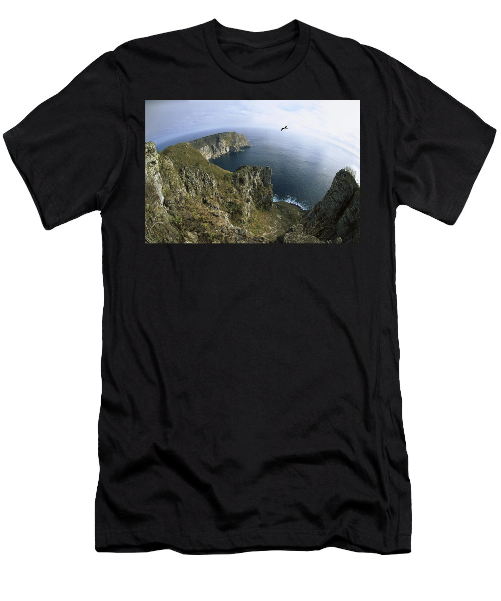 Feb0514 Men's T-Shirt (Athletic Fit) featuring the photograph Red-footed Booby And Swallow-tailed by Tui De Roy
