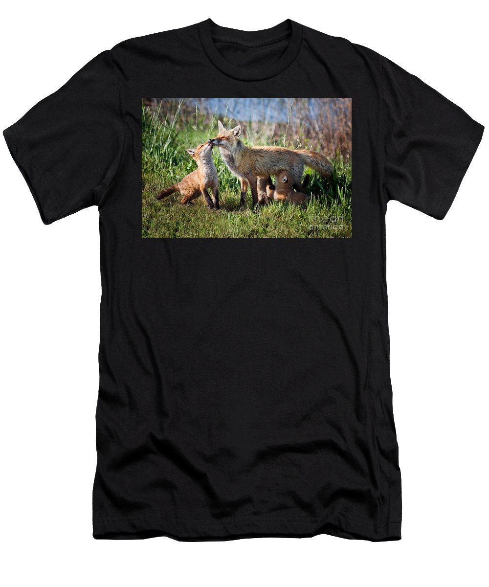 Award Winning Men's T-Shirt (Athletic Fit) featuring the photograph Red Fox Family by Ronald Lutz