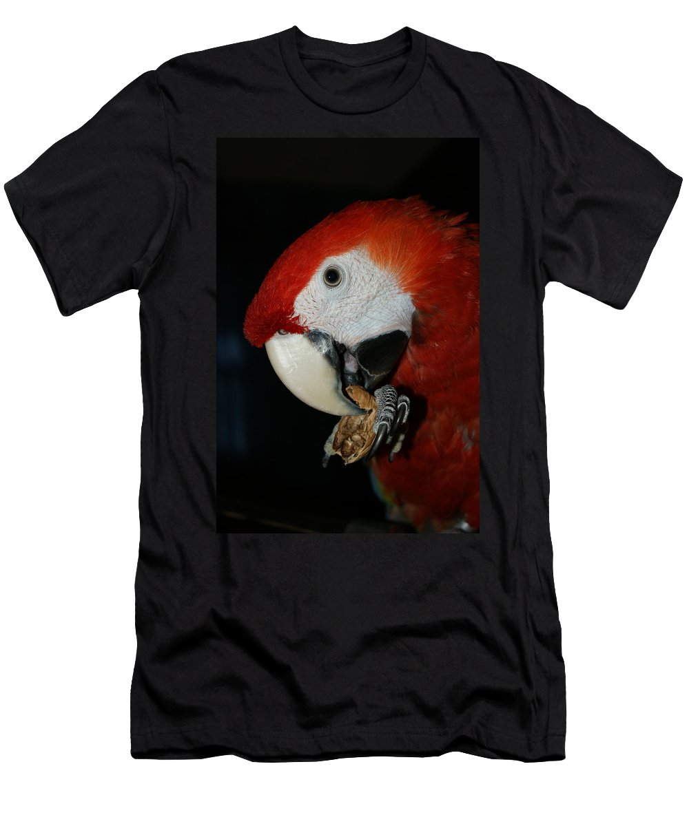 Red Macaw Men's T-Shirt (Athletic Fit) featuring the photograph Red Macaw by Ernie Echols