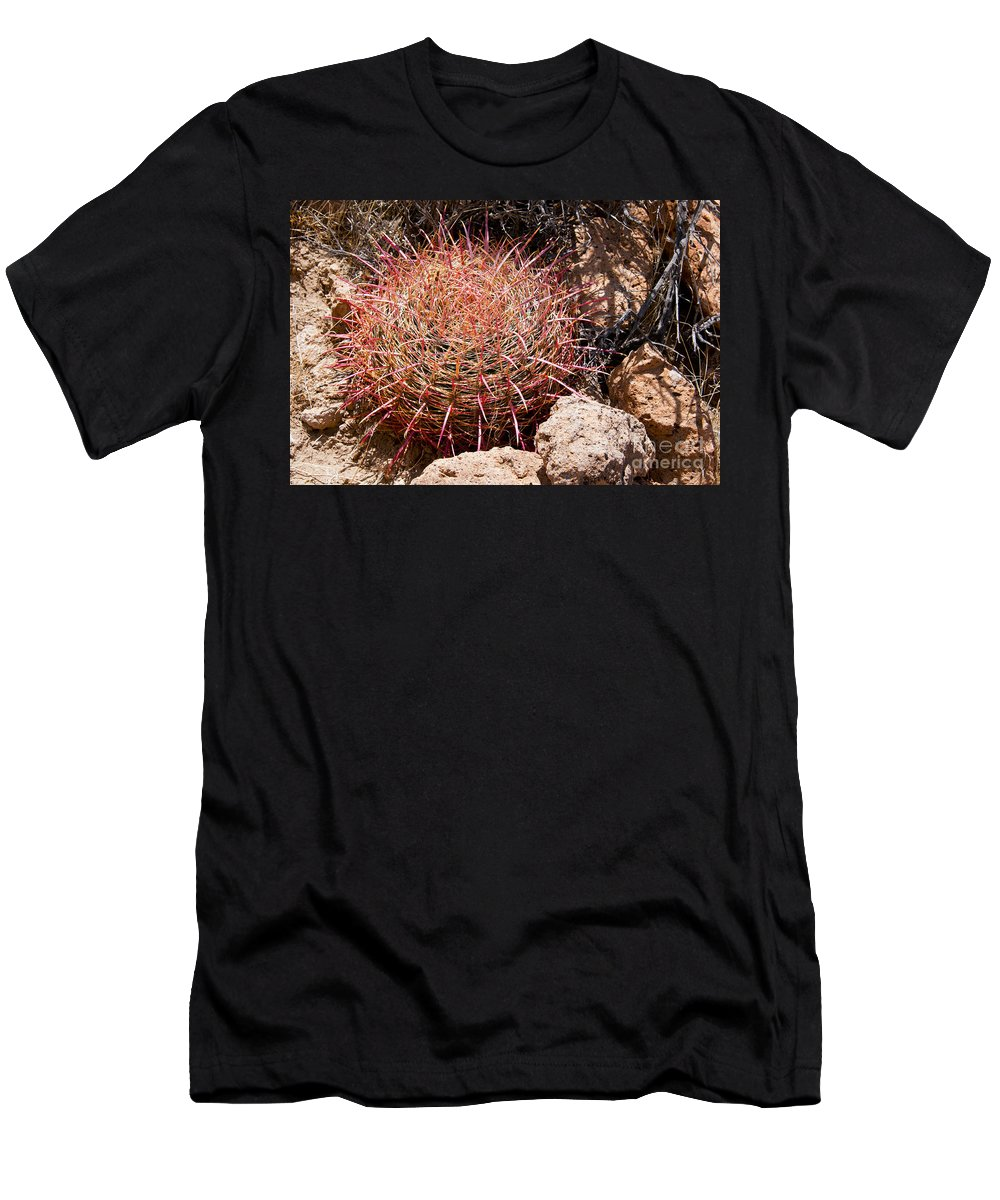 Hole In The Wall Mohave National Preserve California Rock Rocks Red Barrel Cactus Cacti Texture Textures Plant Plants Men's T-Shirt (Athletic Fit) featuring the photograph Red Mohave Barrel Cactus by Bob Phillips