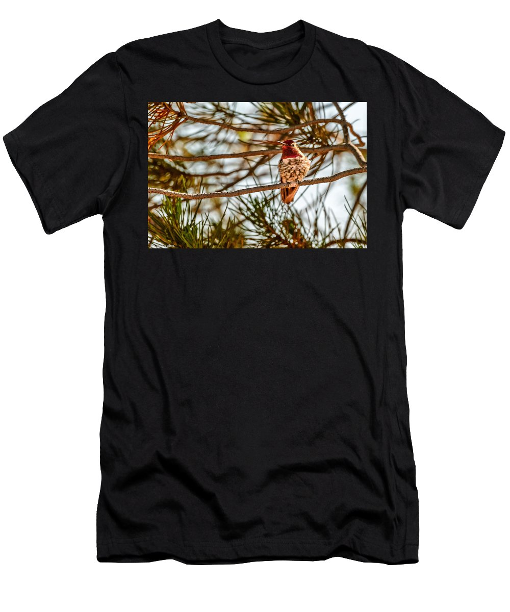 Bird Men's T-Shirt (Athletic Fit) featuring the photograph Red Rock Country Hummingbird by Bob and Nadine Johnston