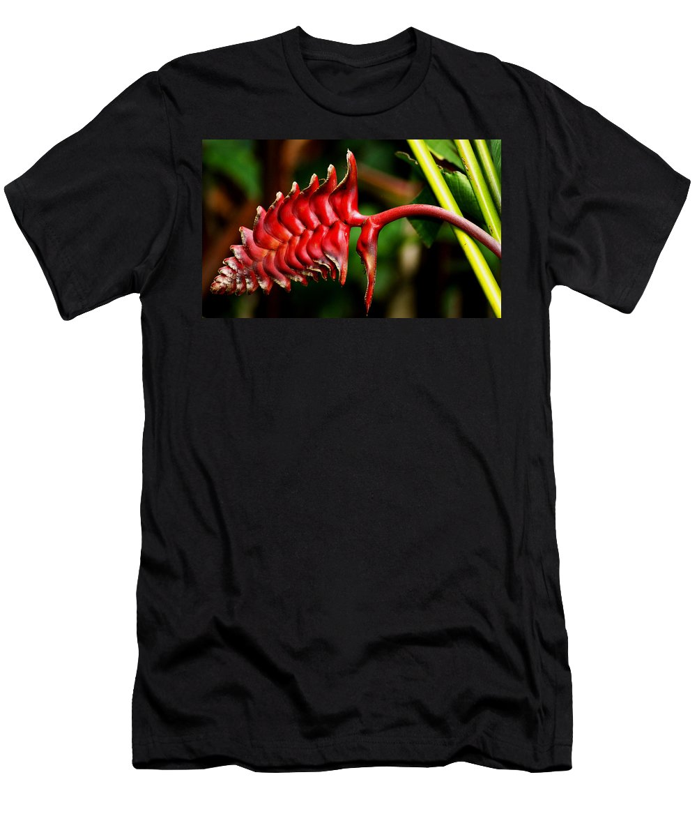 Flower Men's T-Shirt (Athletic Fit) featuring the photograph Red Scales by Brian Kerls