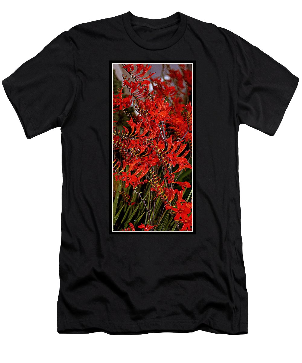 Flowers Men's T-Shirt (Athletic Fit) featuring the photograph Red Devils Tongue Vine Vertical by Kathy Barney