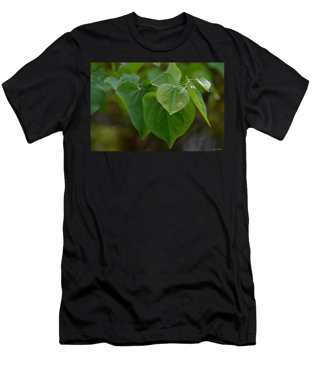 Redbud Hearts Men's T-Shirt (Athletic Fit) featuring the photograph Redbud Hearts by Maria Urso
