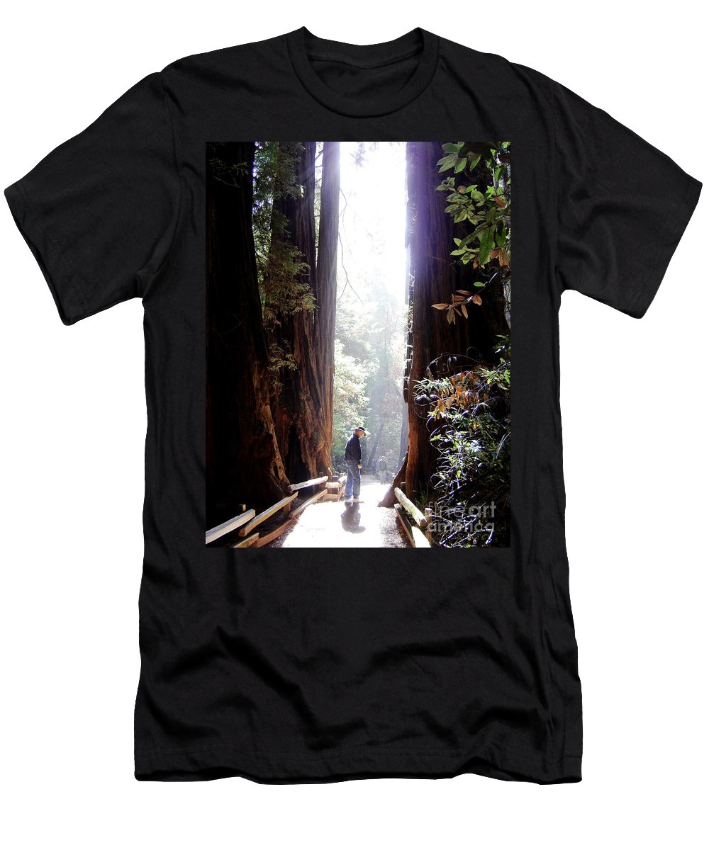 Pathway Men's T-Shirt (Athletic Fit) featuring the photograph Redwood Path by Mary Rogers