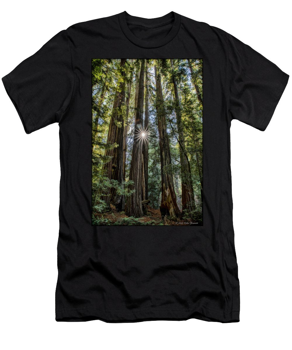 Redwoods Men's T-Shirt (Athletic Fit) featuring the photograph Redwoods by Erika Fawcett