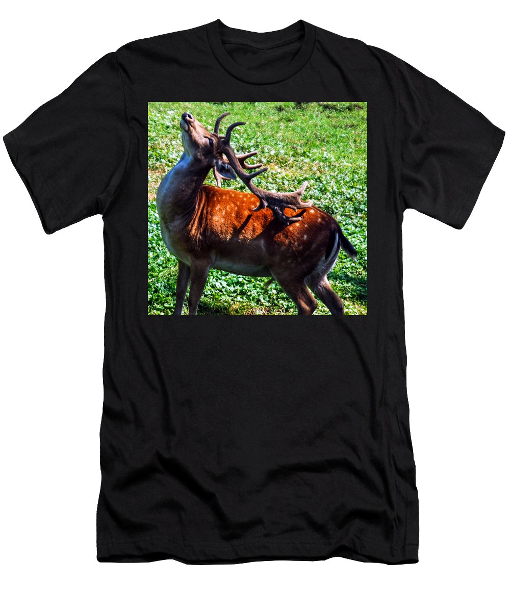 Optical Playground By Mp Ray Men's T-Shirt (Athletic Fit) featuring the photograph Reindeer Scratch by Optical Playground By MP Ray