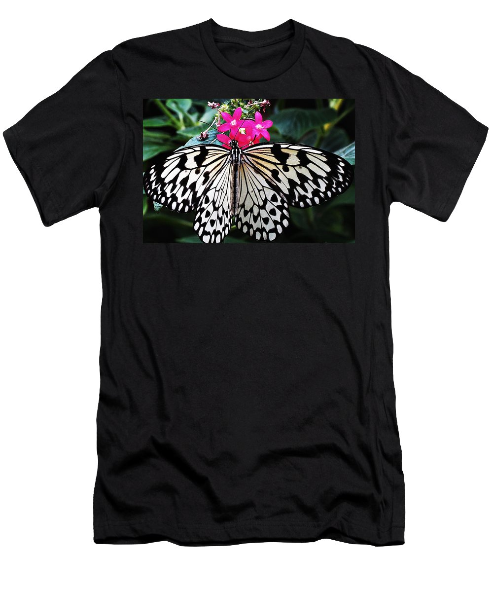 Butterfly Men's T-Shirt (Athletic Fit) featuring the photograph Rice Paper Butterfly On Pink by MTBobbins Photography