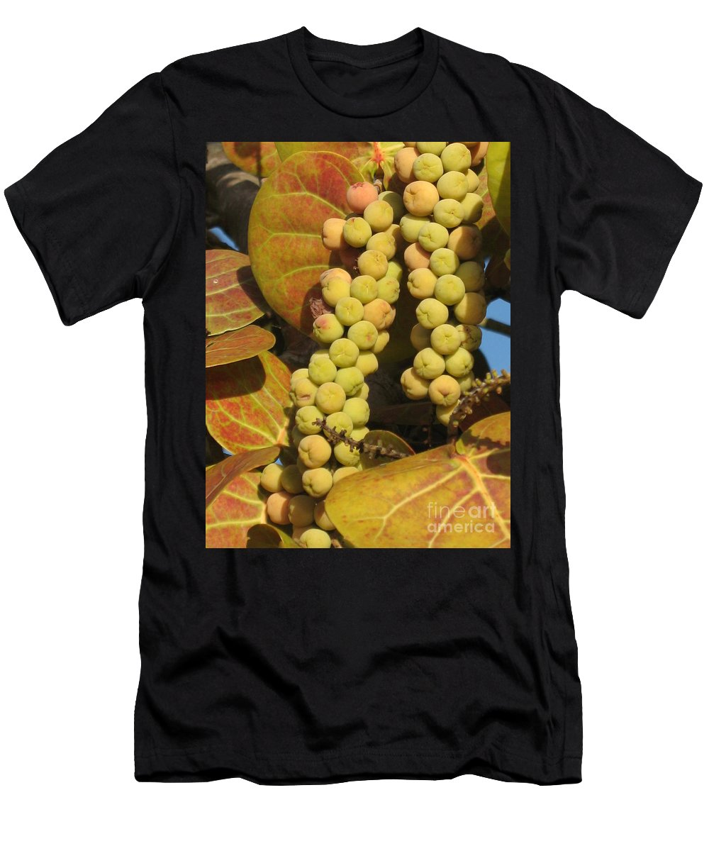 Seagrapes Men's T-Shirt (Athletic Fit) featuring the photograph Ripe Seagrapes by Christiane Schulze Art And Photography