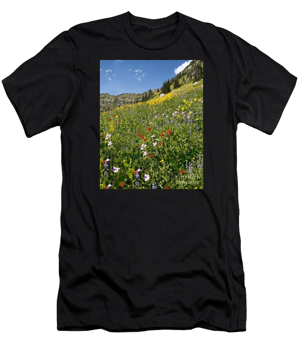 Wildflowers Men's T-Shirt (Athletic Fit) featuring the photograph Rocky Mountain Wildflower Landscape by Timothy Flanigan