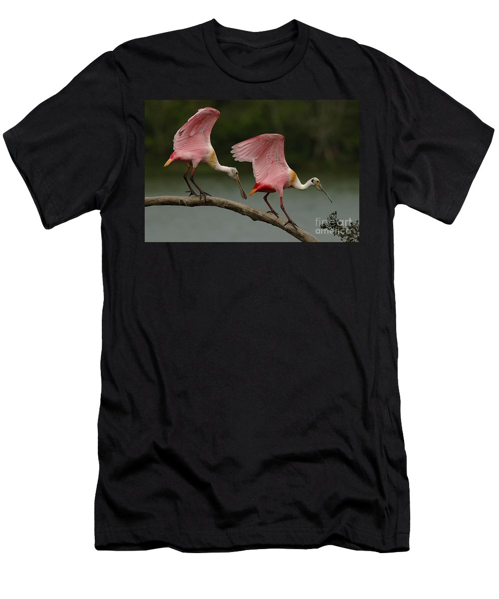 Spoonbills Men's T-Shirt (Athletic Fit) featuring the photograph Rosiette Spoonbill Pair by Bob Christopher