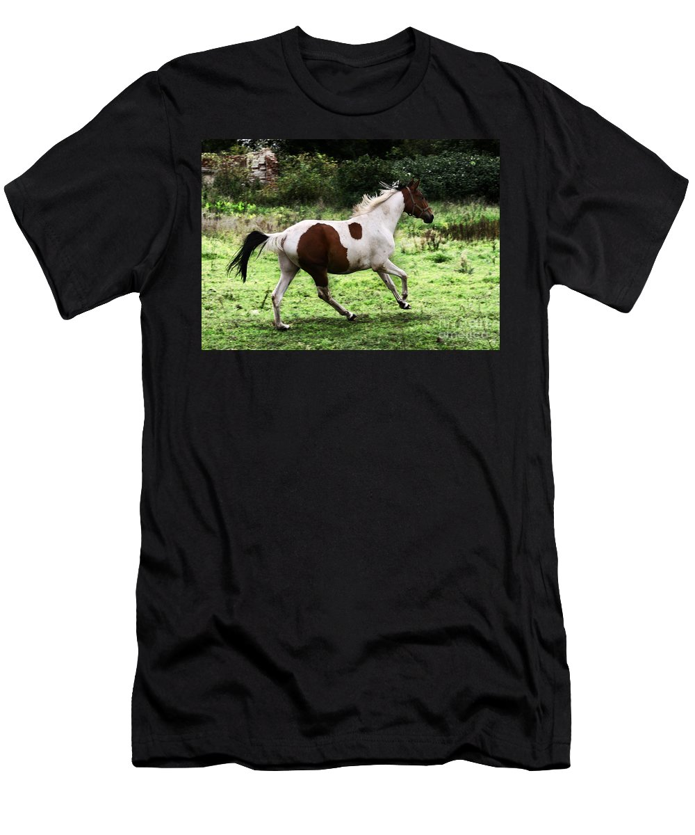 Pinto Men's T-Shirt (Athletic Fit) featuring the photograph Running Pinto Horse by Angel Ciesniarska