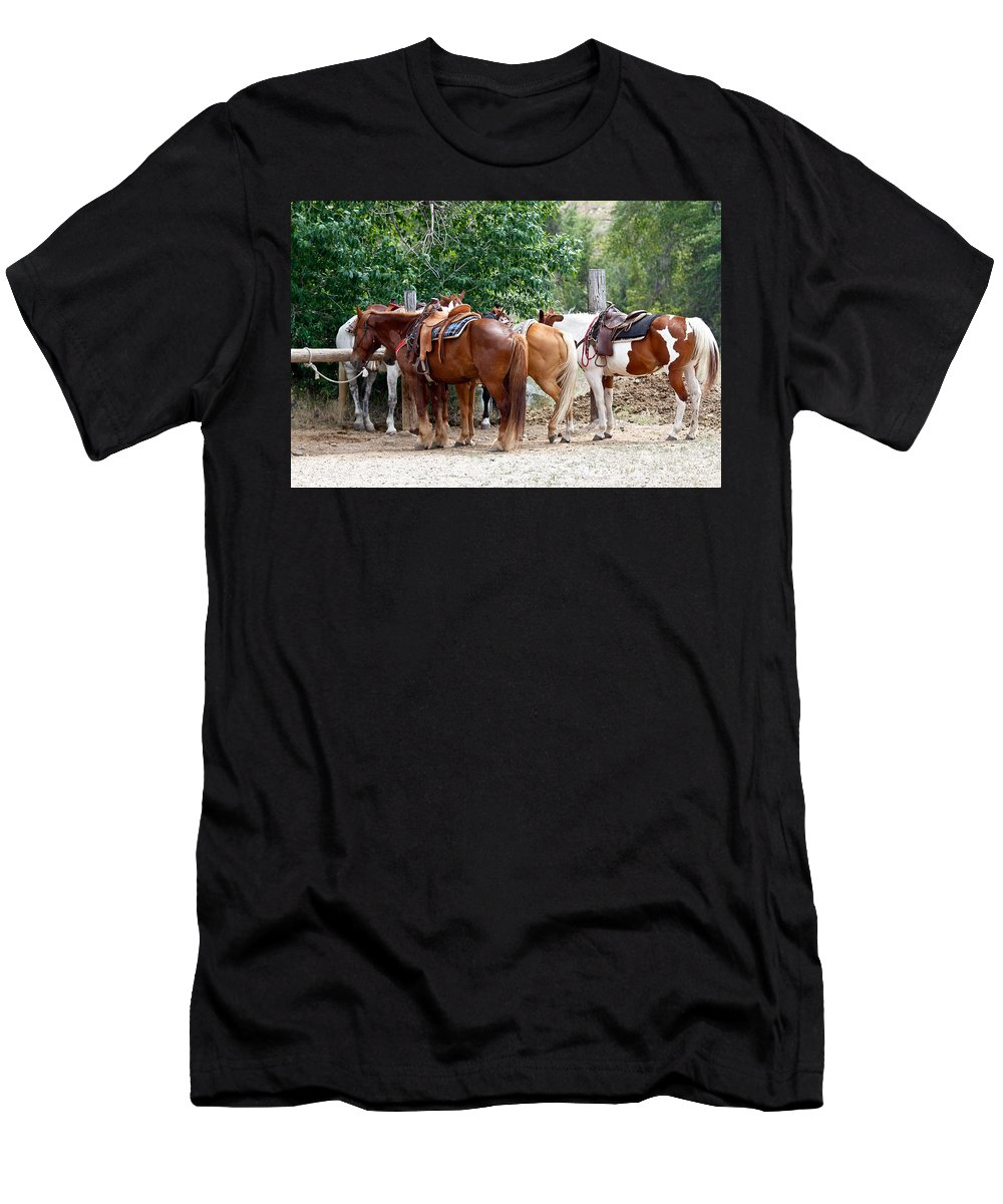 Horses Men's T-Shirt (Athletic Fit) featuring the photograph Saddled by Athena Mckinzie