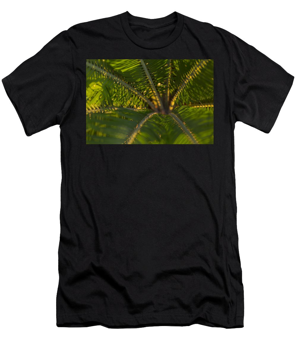 Palm Men's T-Shirt (Athletic Fit) featuring the photograph Sago Symmetry 2 by Scott Campbell