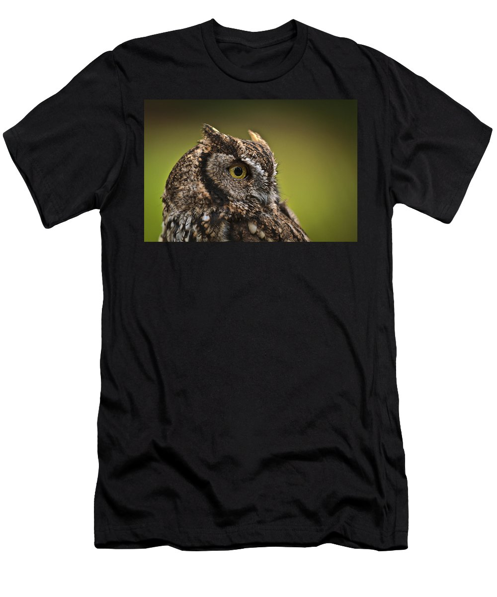 Screech Owl 1 Men's T-Shirt (Athletic Fit) featuring the photograph Screech Owl 1 by Wes and Dotty Weber