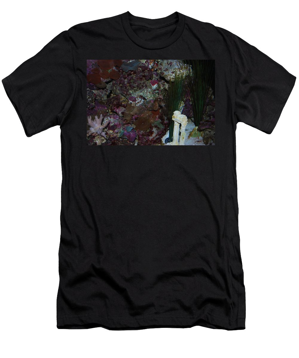 Taken Through Glass Of Aquarium Men's T-Shirt (Athletic Fit) featuring the photograph Sea Horse by Robert Floyd