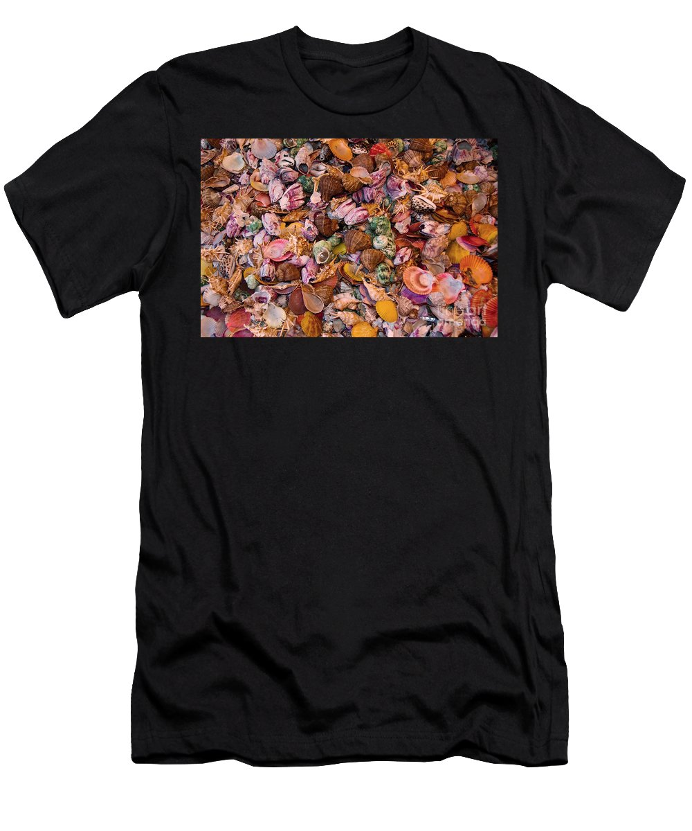 Seashells Men's T-Shirt (Athletic Fit) featuring the photograph Seashells by Anthony Sacco
