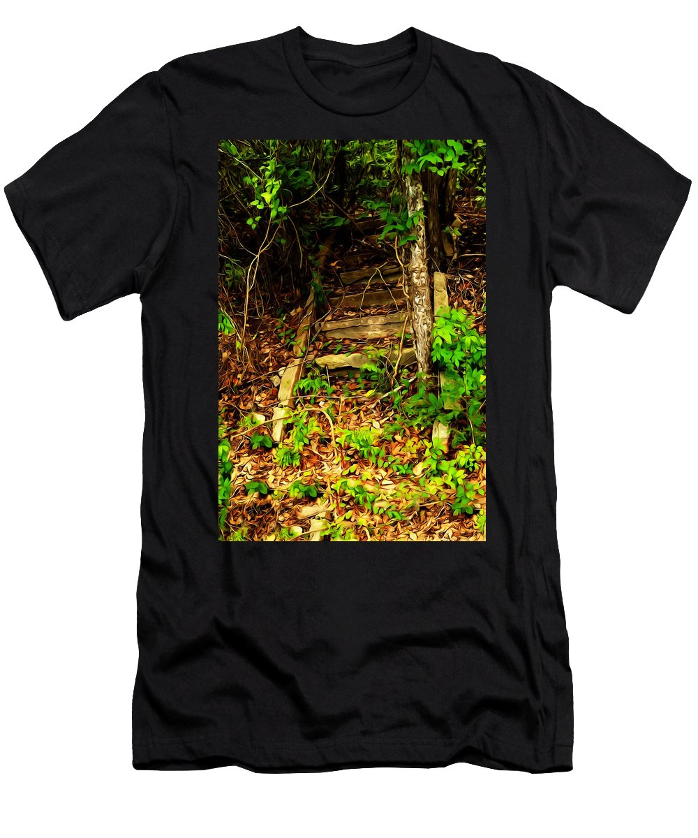 Steps Men's T-Shirt (Athletic Fit) featuring the photograph Secret Stairway by Bartz Johnson