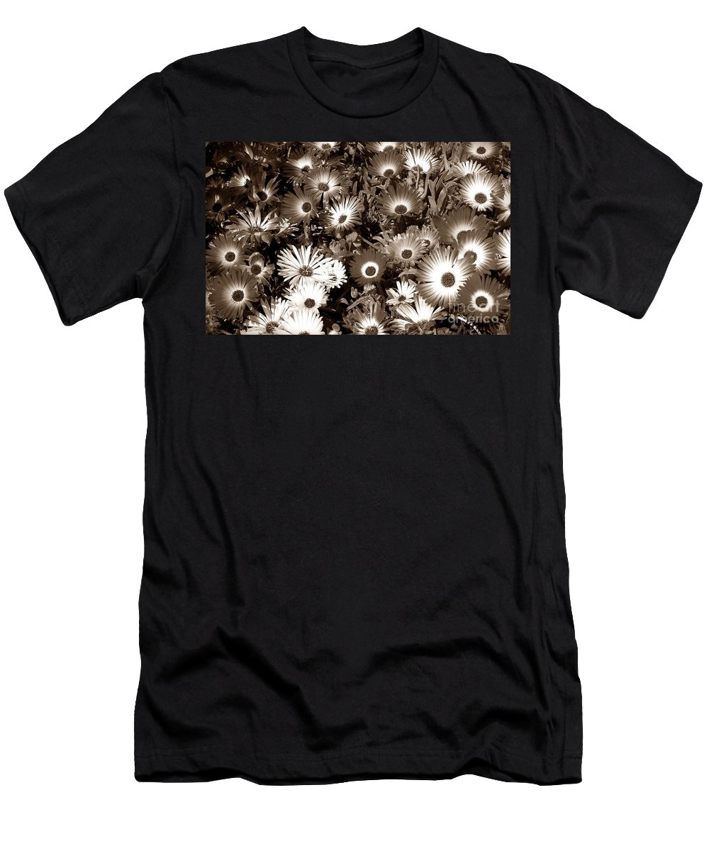 Sepia Asters Men's T-Shirt (Athletic Fit) featuring the photograph Sepia Asters by Chalet Roome-Rigdon