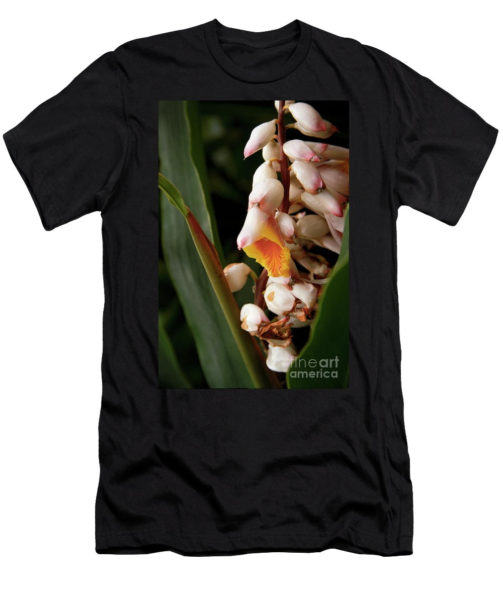 Flowers Men's T-Shirt (Athletic Fit) featuring the photograph Shell Ginger by Kathy McClure