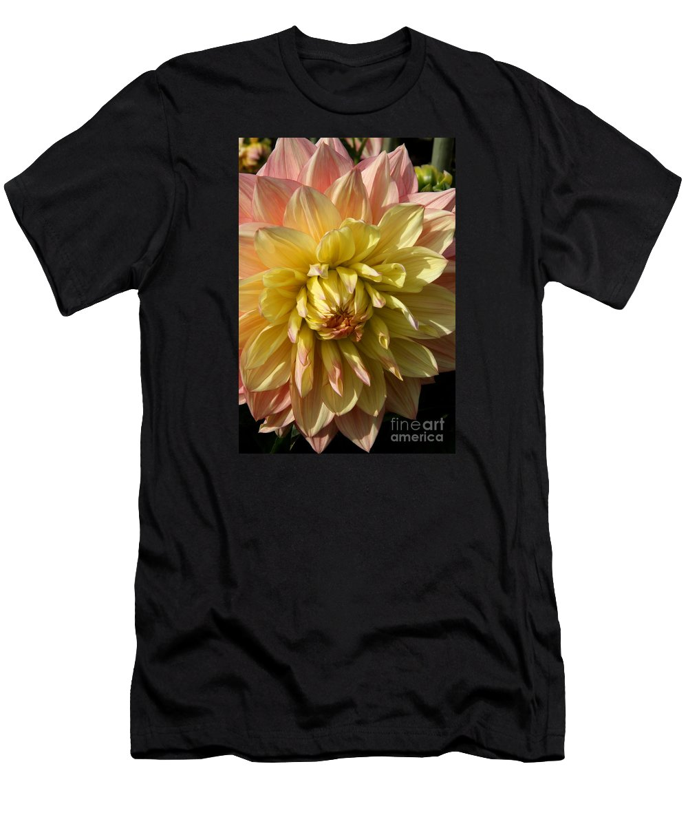 Dahlia Men's T-Shirt (Athletic Fit) featuring the photograph Shy Dahlia Beauty by Christiane Schulze Art And Photography