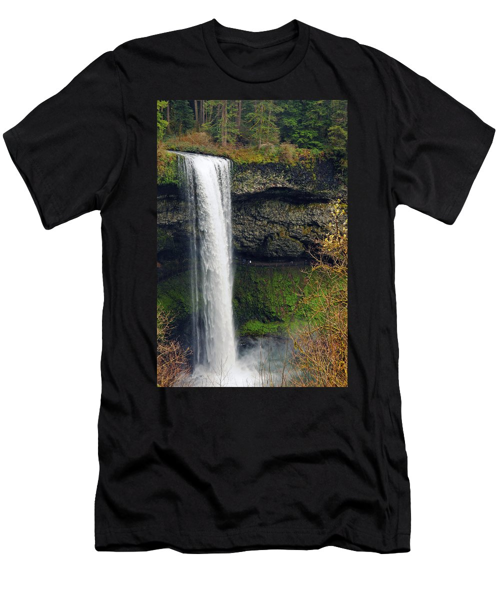 Silver Falls State Park Men's T-Shirt (Athletic Fit) featuring the photograph Silver Falls 1 by Tara Fisher