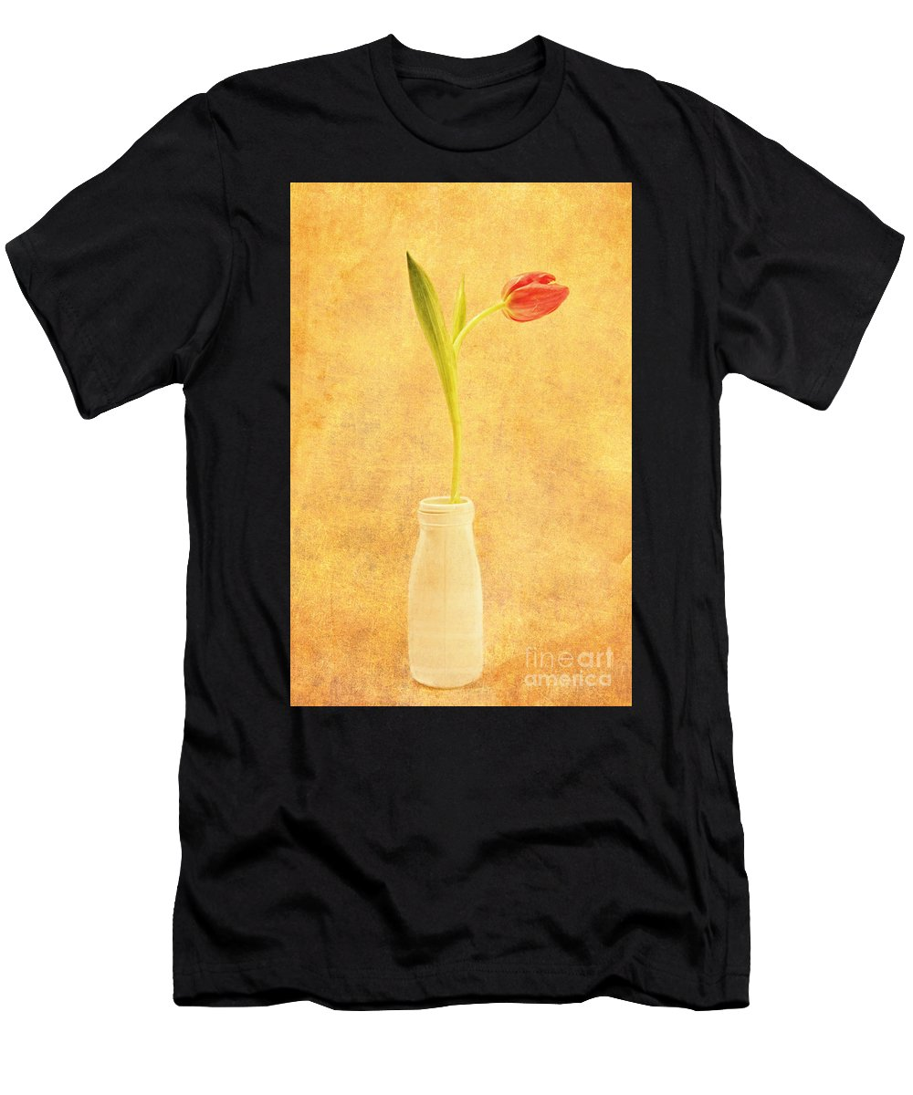 Simplicity Men's T-Shirt (Athletic Fit) featuring the photograph Simplicity - No Words by Lori Frostad