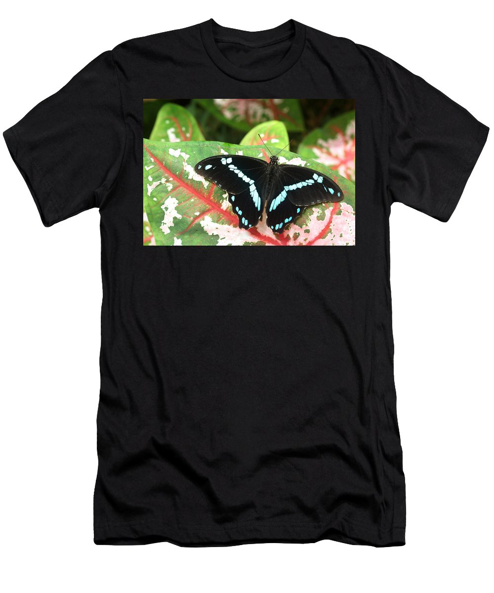Blue Men's T-Shirt (Athletic Fit) featuring the photograph Sitting On A Leaf by Sumi Martin