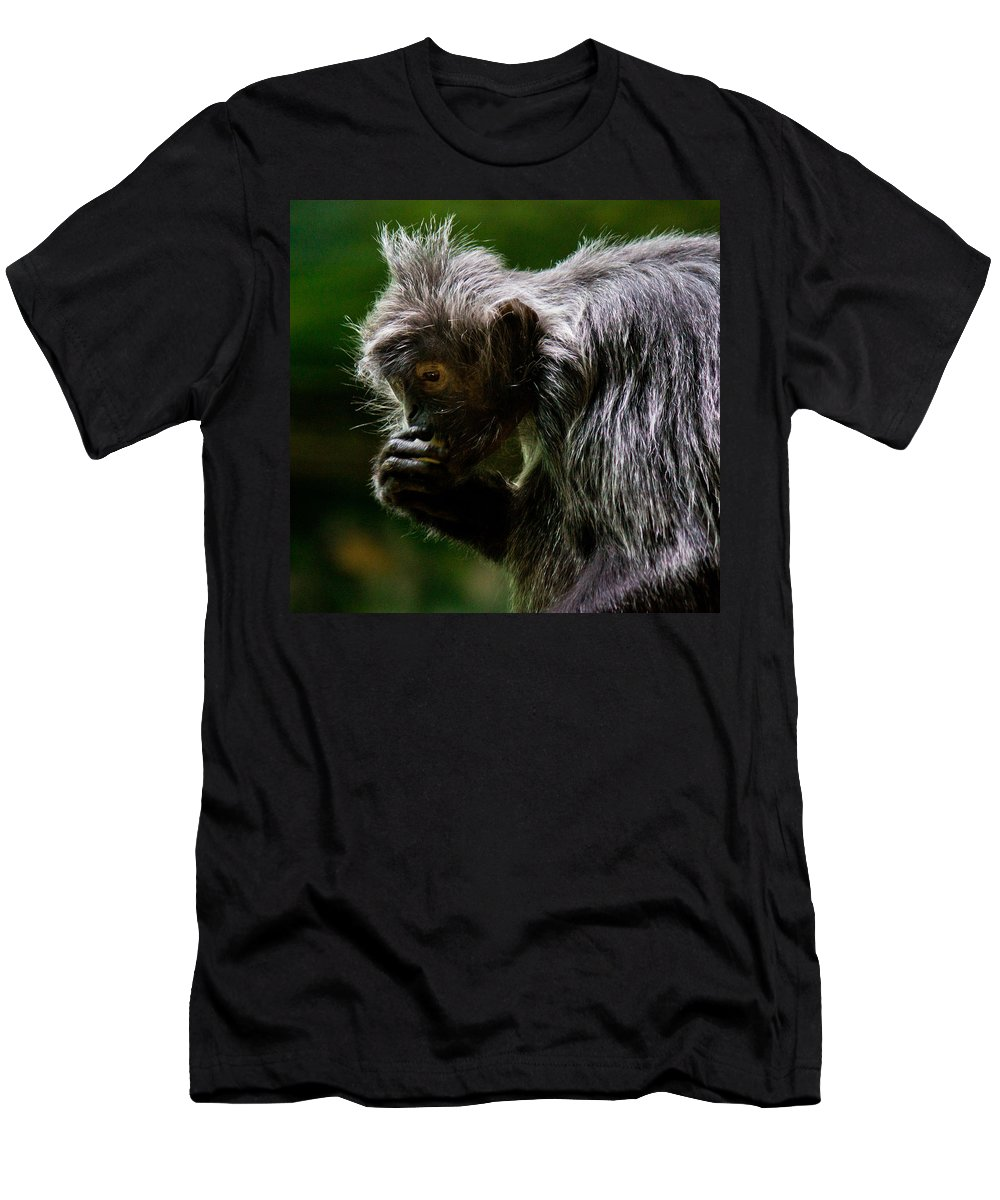 Small Men's T-Shirt (Athletic Fit) featuring the photograph Small Monkey Eating by Jonny D