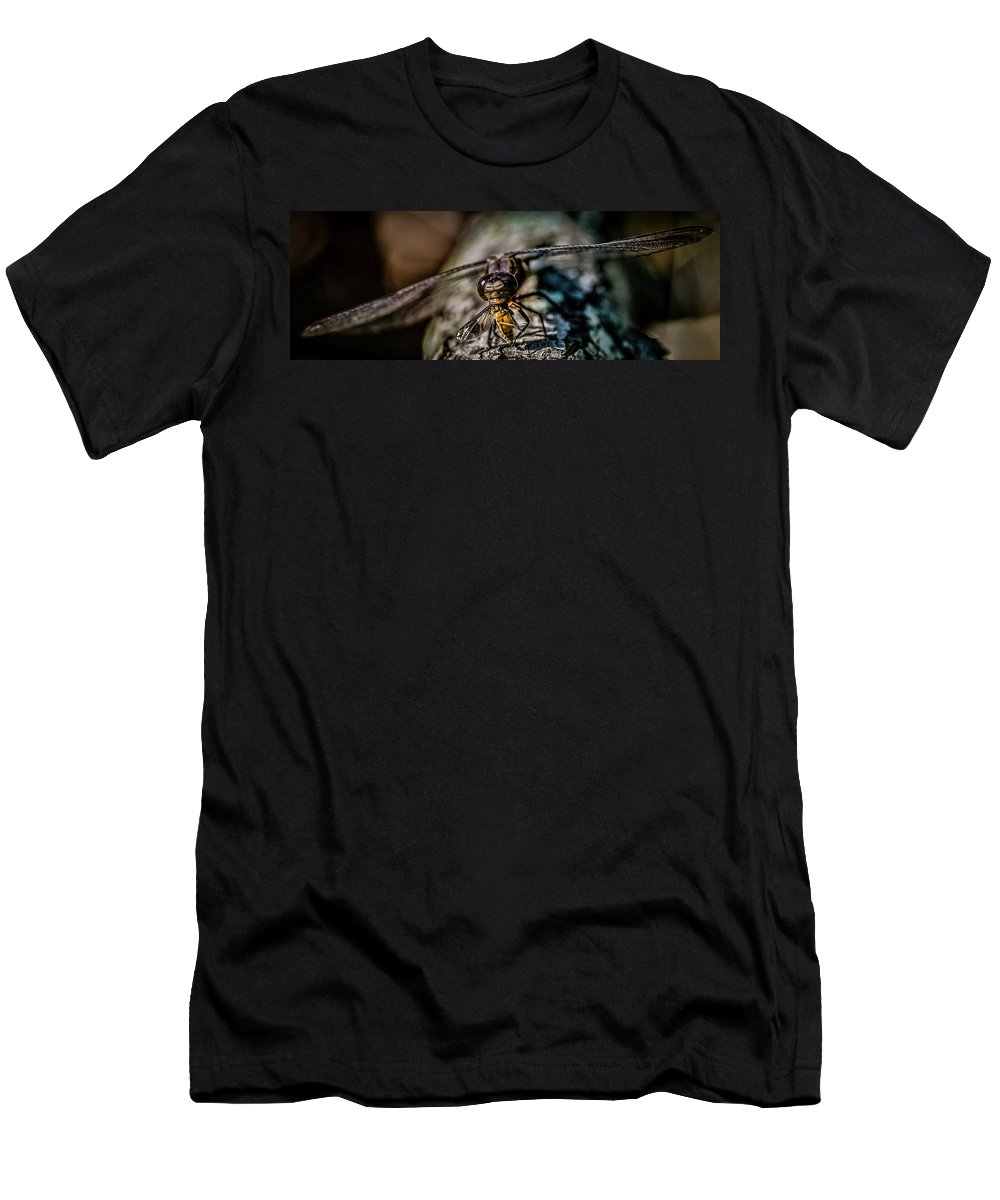 Dragonfly Eating A Deer Fly Men's T-Shirt (Athletic Fit) featuring the photograph Snack Time by Paul Freidlund