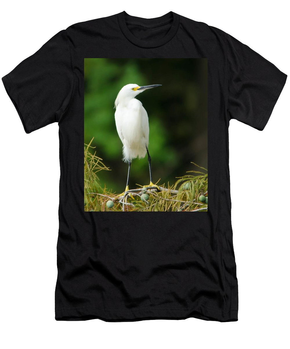Egret Men's T-Shirt (Athletic Fit) featuring the photograph Snowy Egret 1 by Dot Rambin